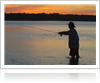 sunrise-fly-fisherman-1000-ffccccccWhite-3333-0.20.3-1
